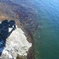 Gotlandia-000023.jpg