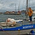 Gotlandia-000106.jpg